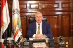 صادرات مصر من البطاطس تتجاوز الـ 380 ألف طن هذا العام وروسيا أكبر مستورد