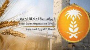 """مؤسسة الحبوب: خدمات منصة """"استيراد"""" مخصصة لاستيراد الشعير لغرض التجارة"""
